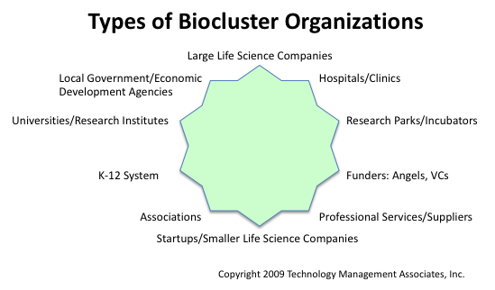 10-point figure of biocluster organizations